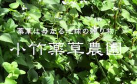 小竹薬草農園の活動を全力で応援するコース