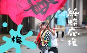 【豪華なリターンは不要な方むけ】野田よさこい躍り協議会・純粋応援コース梅
