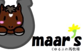 起業記念名古屋競馬協賛レースの報告をお届けします!