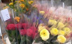 《花配りプロジェクト「ハナクバ」を支援!》お花で100人を笑顔に!
