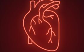 心臓マッサージや急変時の対応の講習会