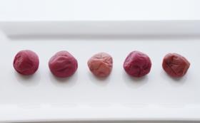 【福井県外の方限定】おすすめ!梅干し食べ比べセット
