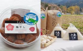 【福井県外の方限定】お米と梅干しセット