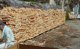 東白川村の榊1対(2束)と東農ヒノキ薪 約100㎏(約20Kg×5箱)