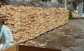 東白川村の榊1対(2束)と東農ヒノキ薪 約200㎏(約20Kg×10箱)