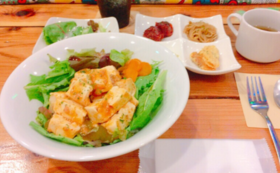 +Green Café+で食べて応援!日替わりランチチケットコース