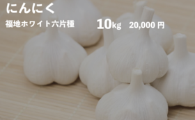 にんにく10kgコース