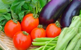 【食べて応援!10人限定】野菜5種類詰め合わせ定期便6ヶ月コース