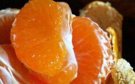 感謝柑橘セットコースA