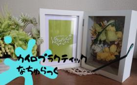 【野田市で使える!】カイロプラクティックなちゅらっく割引券コース