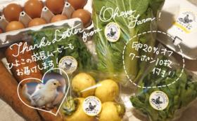 おはよう農園の「たまごとお野菜で応援!」コース
