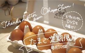 【完売】【先着3名様限定!】おはよう農園の「ひよこと卵をとにかく応援!」コース