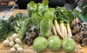 【グッズコース】酵素で育てた「完全無肥料・無農薬」健康野菜セット