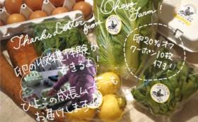 おはよう農園の「たまごとお野菜で応援!」コース②