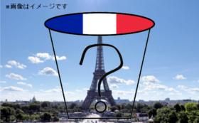 【日本未入荷!イベント限定販売!】フランスのカップラーメン