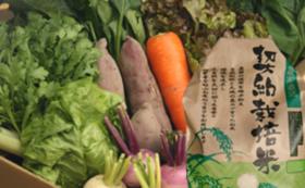 仙台沿岸部の若手農家グループで育てた新鮮なお米や野菜セットコース