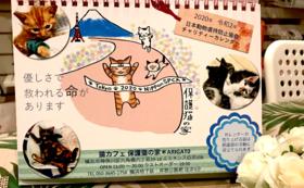 可愛い保護猫の家カレンダーお送りします!