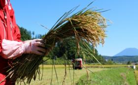 天皇家に献上された鴨川のお米「長狭米」5キロ