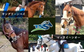 引退馬たちの写真セット+クラブで引退競走馬を見学