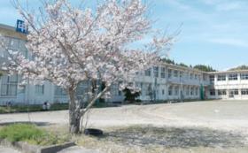 高江未来学校スポンサーコース