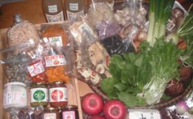 【食べて応援!】旬の無農薬野菜セット(おまかせ12品前後)