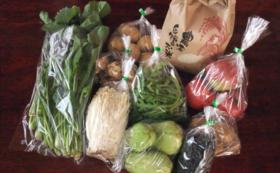 【食べて応援!】旬の無農薬野菜セット(おまかせ8品前後)
