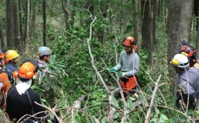 【特別体験コース】プロの木こりがしっかり教える1日里山暮らし体験