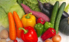 仙台沿岸の若手生産者が育てた野菜7種の野菜セット
