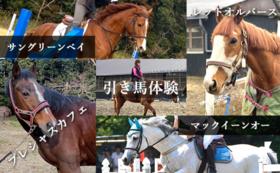 引退馬たちの写真セット+引き馬体験