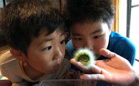 【お子様をご招待コース】自然体験プログラムご招待