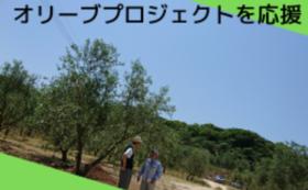 【応援コース】田浦オリーブプロジェクトを応援してください!