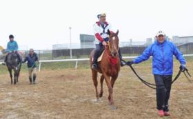 【相馬野馬追を体験】北郷騎馬会で乗馬体験