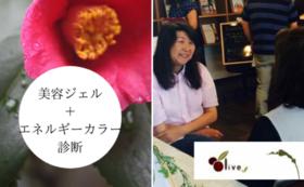 雪椿美容ジェル+エネルギーカラー診断コース