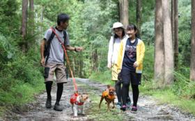 応援+イベント参加コース(半日フル対応)コース【愛犬ご家族向け(1名様プラン)】