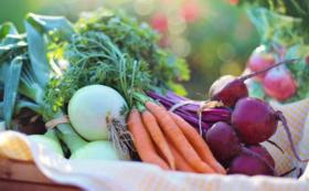 恵那の美味しい野菜セット+詩集