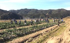 【高川学園サッカー部サポーター必見】高川学園サッカー部「農業部」が作った野菜