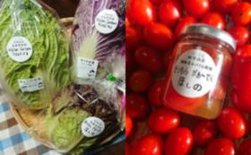心を込めてつくった季節のユニークお野菜セット1回分と農園で取れた野菜の加工品