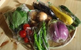 ●有機農家さんの季節野菜セット!