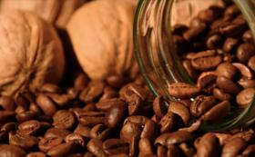 コーヒー豆:200g
