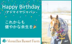 【期間限定コース~4/24】アドマイヤジャパン:バースデープレゼント