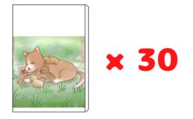 【団体や施設向け】絵本冊子×30冊セット