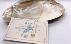 琵琶湖パールの一粒ネックレス
