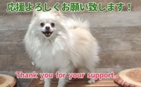 アニミル応援プラン<1万円>