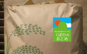 【食べて応援!】新米:窪野米5kgと地産玉葱5kgをお届け!