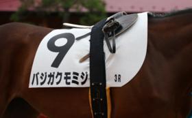 【超レアプラン】デビュー戦のゼッケン引換券