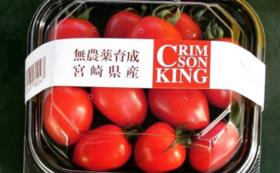 <食べる>無農薬スイカと無農薬トマトのフルコース