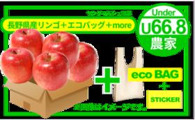 【農家さんの想いをお届けコース】長野県産りんご(1kg)