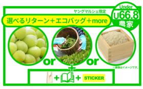 【農家さんの想いをお届けコース】『長野県産シャインマスカット』or『鈴木製茶さんの煎茶』or『鶴岡の佐藤智信さんのお米』