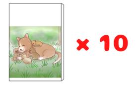 【団体や施設向け】絵本冊子×10冊セット