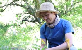 里山暮らしのおすそわけ(草花篇) オリジナルクラフトと結い庵ファームの農作物